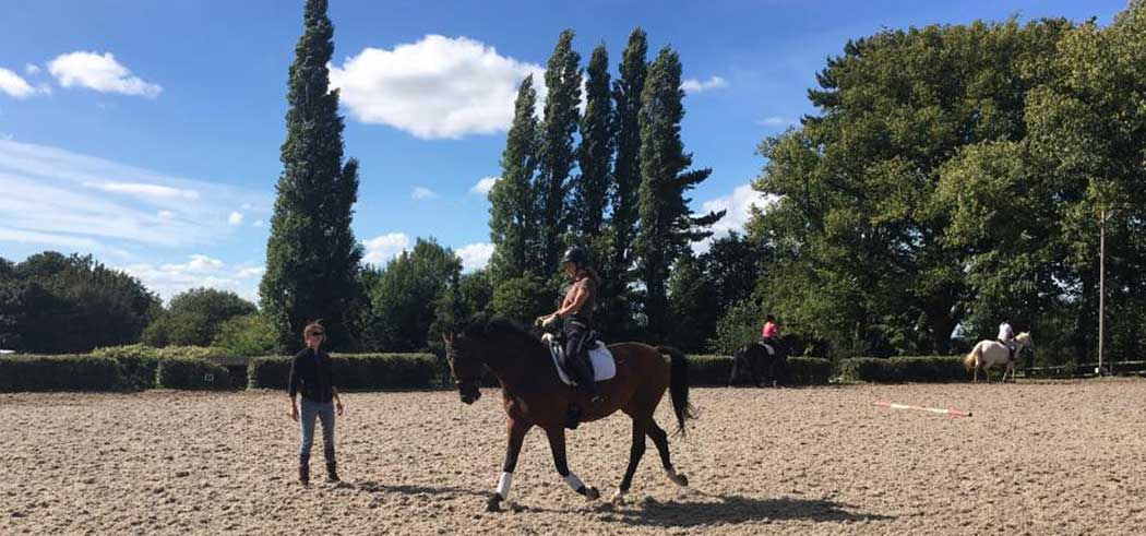 Willington Hall Riding School and Professional Competition Yard Cheshire